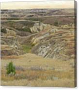 Golden Dakota Prairie Reverie Canvas Print