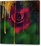 Golden Moments Of A Garden Rose Canvas Print