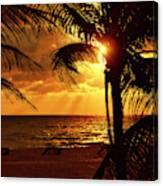 Golden Palm Sunrise Canvas Print