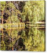 Golden Shevlin Park Canvas Print