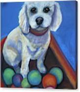 Gracie's Got Balls Canvas Print