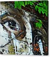 Graffiti On West 107 Street Canvas Print
