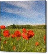 Grassland And Red Poppy Flowers 3 Canvas Print