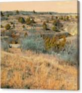 Grassy Ridge Reverie Canvas Print