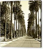 Grayscale Image Of Beverly Hills Canvas Print