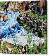 Great Falls Waterfall 201903 Canvas Print