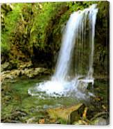 Grotto Falls On Trillium Gap Trail In Smoky Mountains National Park Canvas Print