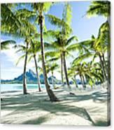 Hammock At Bora Bora, Tahiti Canvas Print
