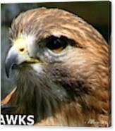 Hawks Mascot 2 Canvas Print