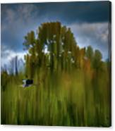 Heron Flying Abstract #h9 Canvas Print