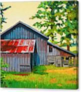 Hidden Sheep Barn Canvas Print