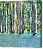 High Bayou Water Canvas Print