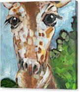 Hobbes Giraffe Canvas Print