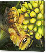 Honey Bee On Wild Golden Glow Canvas Print