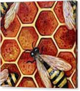 Honey Bees Canvas Print