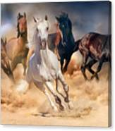 Horse Herd Run In Desert Sand Storm Canvas Print