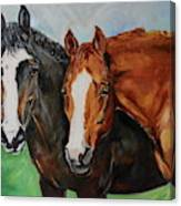 Horses In Oil Paint Canvas Print