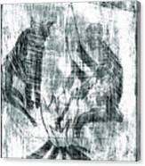How The Leopard Got His Spots D20ed2 Canvas Print