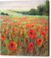 I Dream Of Poppies Canvas Print