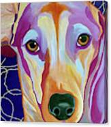 I Should Have Been Jackson Pollock's Dog Canvas Print