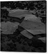 Ice Layer On The Seafloor Canvas Print