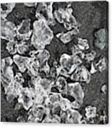 Ice Pattern On Black Sand Canvas Print