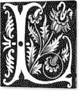 Illuminated Letter L Canvas Print