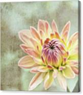Impression Flower Canvas Print