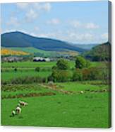 Innerleithen And Tweed Valley Looking East Canvas Print