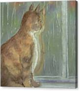 It's Raining Outside Canvas Print