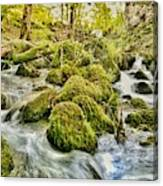 Janet's Foss Flow  Canvas Print