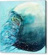 Jellyfish 4 Canvas Print