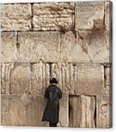 Jewish Man Praying On The Wailing Wall Canvas Print
