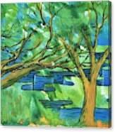Jigsaw Canyon Canvas Print