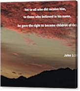 John 12 Canvas Print