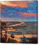 Kalaloch Creek 54 Canvas Print