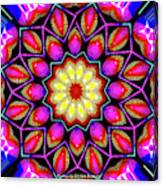 Kaleidoscopic Canvas Print