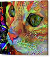 Koko The Orange Cat Canvas Print