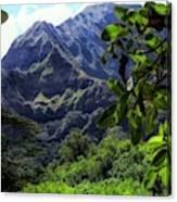 Ko'olau Peak Canvas Print