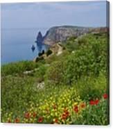 Crimea View, Fiolent Canvas Print