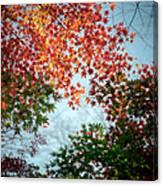 Kuhonbutsu In Autumn Canvas Print