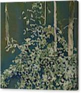 Lacy Edge Canvas Print