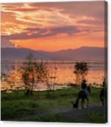 Lake Chapala Sunset And Horses Canvas Print