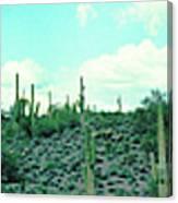 Lake Pleasant Az 047a Canvas Print