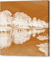 Lake Reflections In Brown Canvas Print