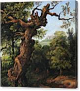 Landscape After A. Van Everdingen Canvas Print