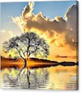 Landscapes 33 Canvas Print