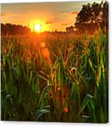 Late Summer Sunset Over The Harvest Canvas Print