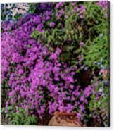 Lavender River Canvas Print