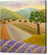 Lavender Sundown Canvas Print